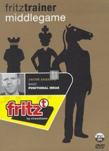 Basic Positional Ideas - DVD