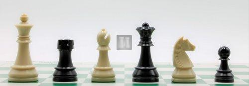 Plastic Chess Set - Tournament Size -  Felted, Staunton Design