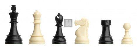 DGT plastic chess pieces King mm.95