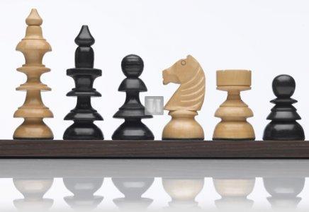 """Staunton """"Wein"""" Chess set - King mm 110"""