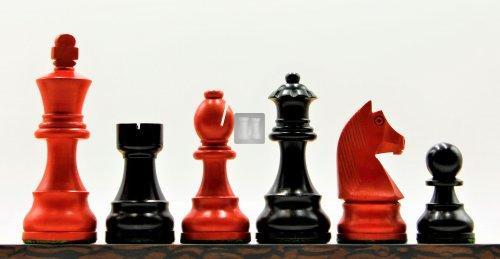 Staunton standard boxwood set Black & Red
