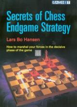 Secrets of chess endgame strategy - 2nd hand rare