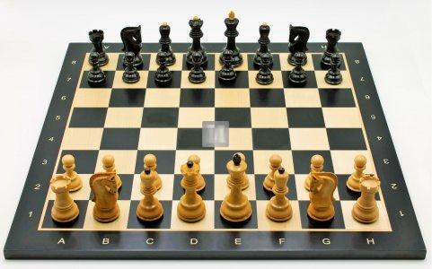 Completo Amur - scacchi + scacchiera da torneo