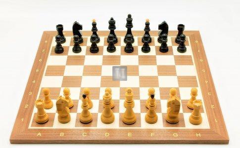 Chess Set: Lyonnesse