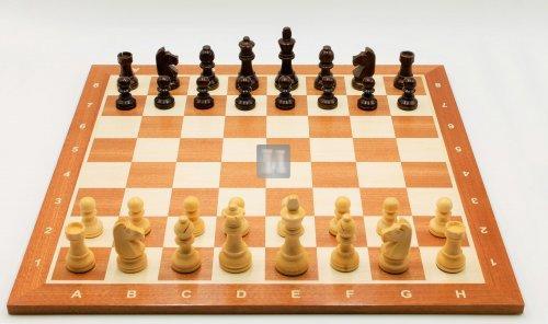 Chess Set: Moebius